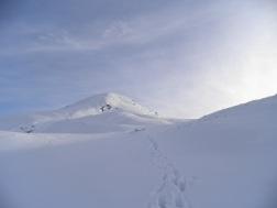 Dumyat looking alpine